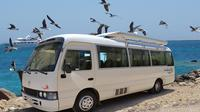 Private One-Way Transfer: Hurghada Airport to El Gouna
