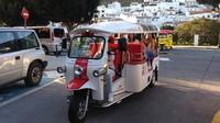 Mijas Panoramic City Tour by Electric Tuk Tuk