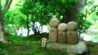 Kamakura Walking Tour: Explore Nature and History