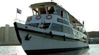 Navigation by the Rio de la Plata from Madero Port Private Car Transfers