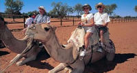 2-Day Uluru (Ayers Rock), Camel Farm and Kata Tjuta Trip from Alice Springs