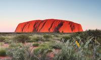 Alice Springs to Uluru (Ayers Rock) One Way Shuttle