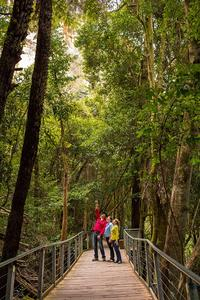 Blue Mountains Small-Group Day Trip and River Cruise with Scenic World