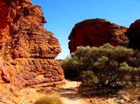 Kings Canyon*