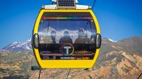 Half-Day La Paz And El Alto Tour Including Cable Car