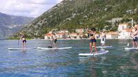 Stand-Up-Paddling At Kotor Bay From Tivat, Kotor Or Budva