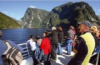 Doubtful Sound Wilderness Cruise from Queenstown*