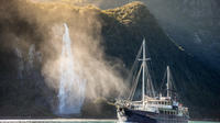 Milford Sound Nature Cruise from Queenstown, Te Anau or Milford Sound