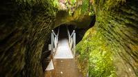 Te Anau Super Saver: Milford Sound Nature Cruise plus Te Anau Glowworm Cave Tour