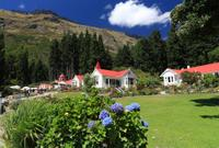 Walter Peak High Country Farm Tour and Cruise from Queenstown*