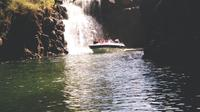 Speedboat Excursion to Grand River South East Waterfall and Ile Aux Cerfs from Trou D'eau Douce