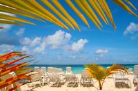 Mangrove Kayak Tour and Cayo Levantado Beach Experience from Punta Cana
