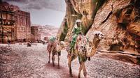 4 Nights 5 Days Private Jordan Classic to Petra Jerash Dead Sea