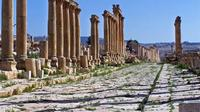 Jerash Half Day Tour from Dead Sea