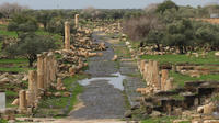 Private Full Day Jerash and Umm Qais Tour From Dead Sea