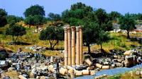 Private Full Day Tour Umm Qais and Ajloun from Dead Sea