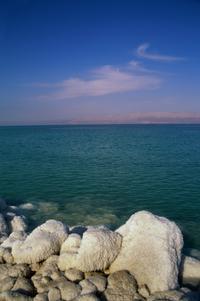 Private Half-Day Tour to The Dead Sea