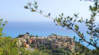 Cinque Terre Pesto Making Class, Boat Tour and Lunch from La Spezia