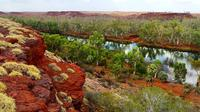 Millstream Day Trip with Indigenous Guide from Karratha