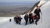 Full-Day Mt Snaefell Hiking Tour from Egilsstadir