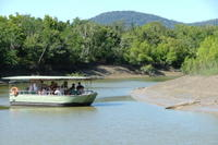 Whitsunday Crocodile Safari including Lunch