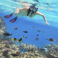 Punta Cana Day Trip: Catalina Island and Altos de Chavon