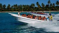 Saona Island Full-Day Tour from Punta Cana