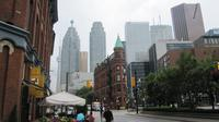 Downtown Toronto Layover Private Tour