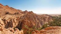 Indian Canyons By Jeep Plus Hiking Tour From Palm Springs