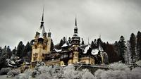 Full-Day Brasov Christmas Market Tour from Bucharest