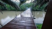 Day Trip To Ulu Temburong National Park From Bandar Seri Begawan
