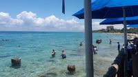 Guided Shore Snorkeling Tour With Lunch in Cozumel