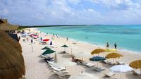 Private Island Tour in Cozumel at Your Leisure