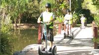 Cairns Ninebot Tour, The Next Generation Segway