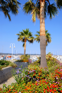 Stop off in charming Port Grimaud on your trip to St-Tropez from Cannes