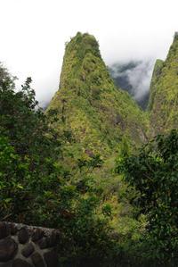 Haleakala, Iao Valley and Central Maui Day Tour