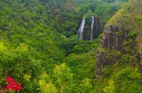 Kauai Day Trip: Waimea Canyon, Wailua River from Oahu