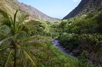 Maui Day Trip: Haleakala, Iao Valley, Old Lahaina from Oahu