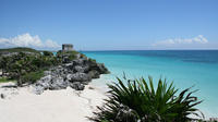 Tulum, Wayak Cenote and Playa del Carmen Tour from Cancun