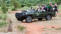 3-Day Classic Safari at Makalali Private Game Lodge
