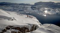 Ilulissat Snowshoeing Hike