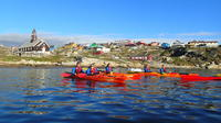 Kayaking Morning Tour in Ilulissat