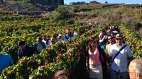 Tenerife Gastronomy Tour