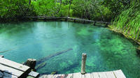 Holbox Island Day Trip from Cancun and Riviera Maya