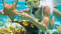Full-Day Glass-Bottom Boat Tour on Nha Trang Bay