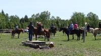 Horseback Trail Ride and Lesson