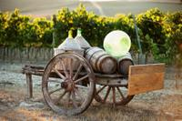 Tuscany Small-Group Day Trip from Florence Including Chianti Wine Tastings