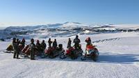 Snowmobiling on Mrdalsjkull Glacier from Reykjavik