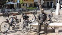 Malaga Family Friendly Bike Tour