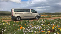 Chauffeured Mini Van Rental in Cape Town